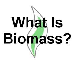What is Biomass graphic
